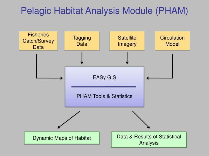 Pelagic Habitat Analysis Module (PHAM)