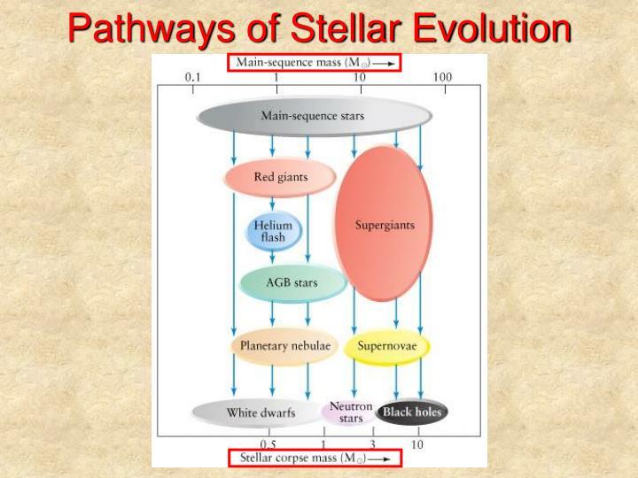 Pathways of Stellar Evolution
