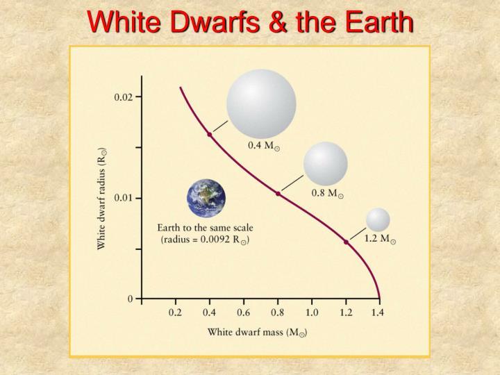 White Dwarfs & the Earth