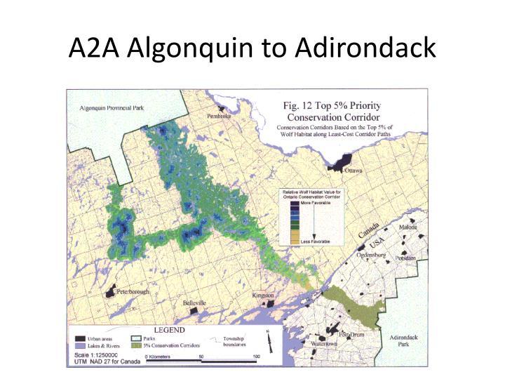 A2A Algonquin to Adirondack