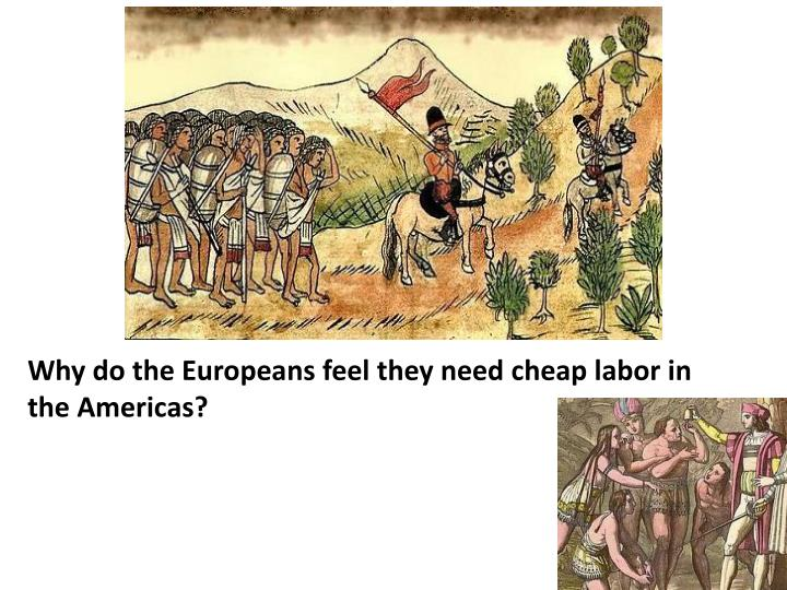 Why do the Europeans feel they need cheap labor in the Americas?