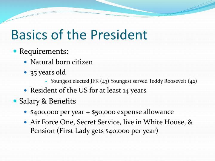 Basics of the President