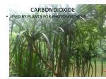 carbondioxide1