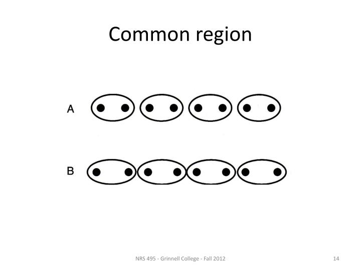 Common region