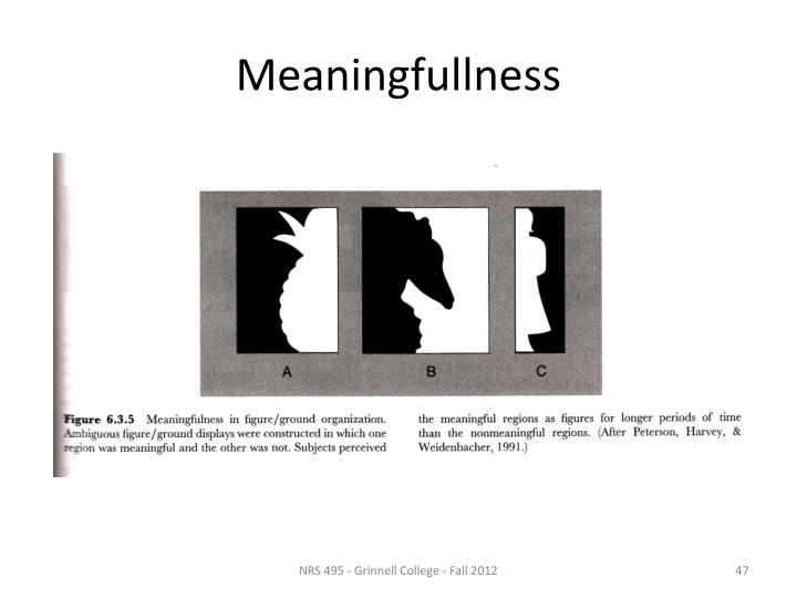 Meaningfullness
