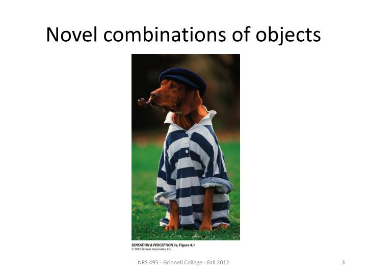 Novel combinations of objects