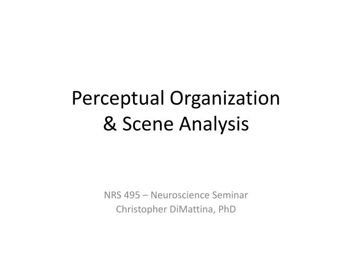 Perceptual organization scene a nalysis
