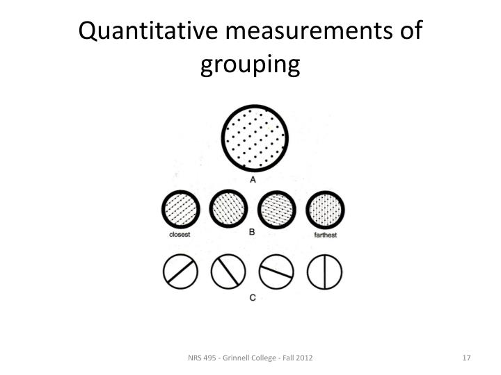 Quantitative measurements of grouping