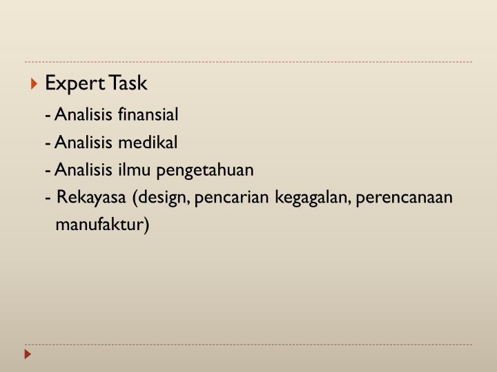 Expert Task