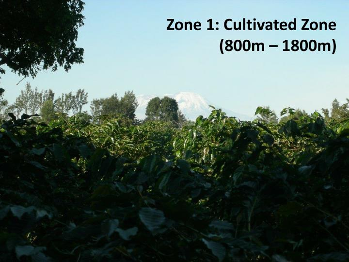 Zone 1: Cultivated Zone