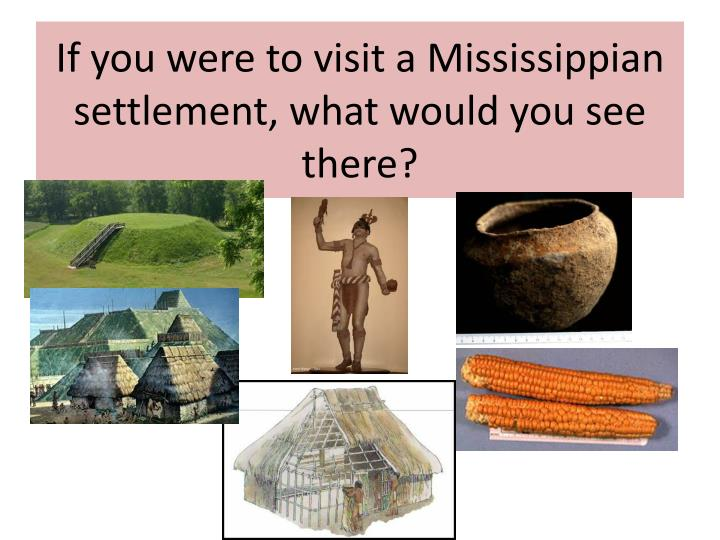 If You Were To Visit A Mississippian Settlement What Would