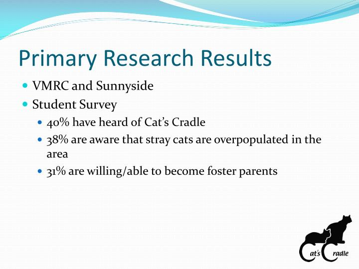 Primary Research Results