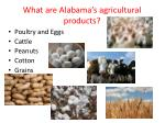 what are alabama s agricultural products