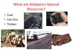 what are alabama s natural resources