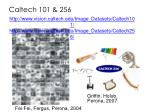 caltech 101 256