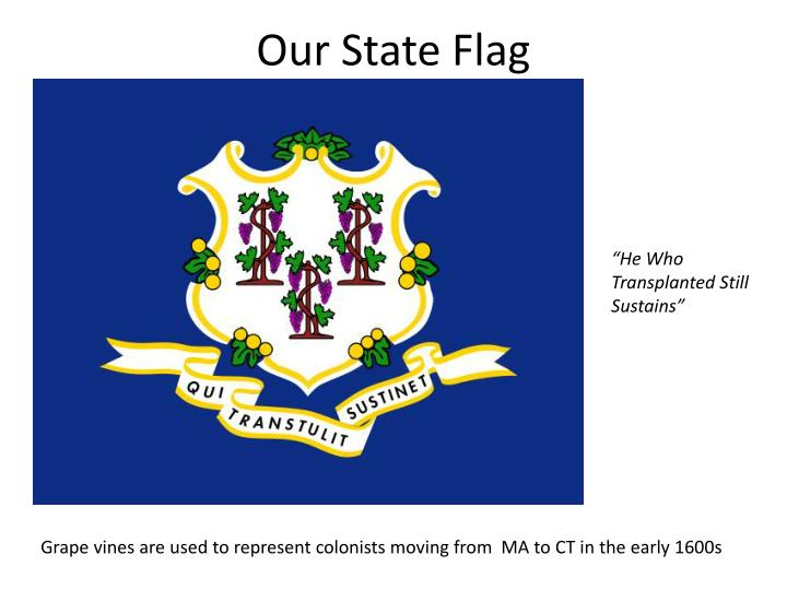 Our State Flag