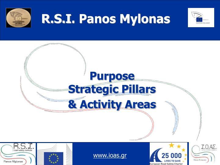 Purpose strategic pillars activity areas