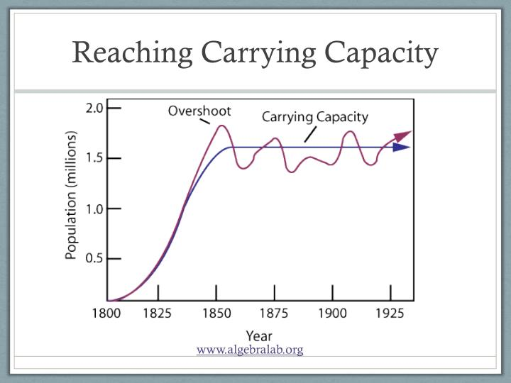 Reaching Carrying Capacity