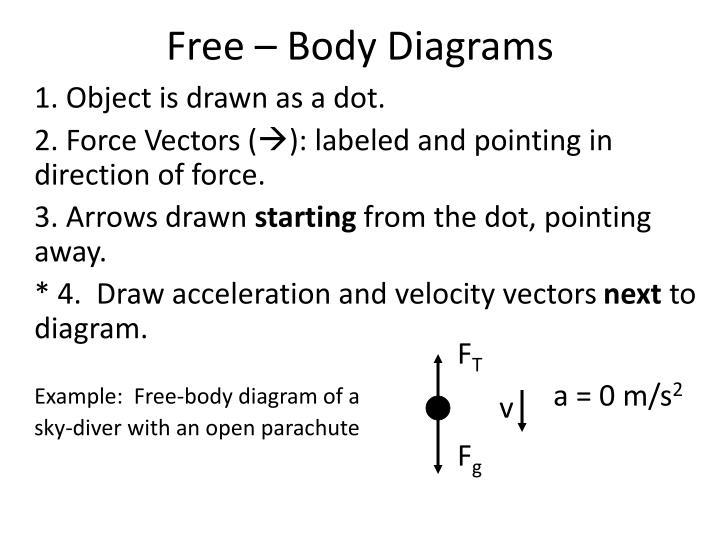Free – Body Diagrams