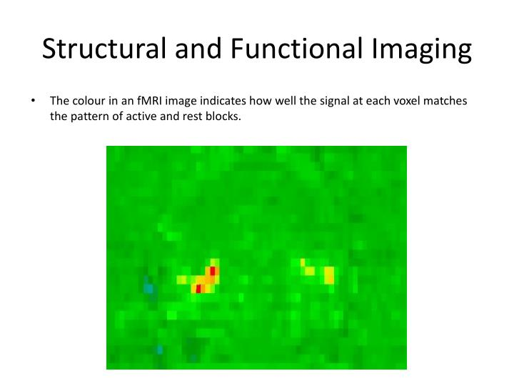 Structural and Functional Imaging