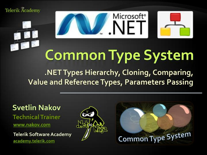 common type system n.