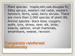 temperate rainforest biodiversity