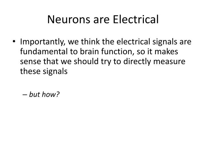 Neurons are Electrical