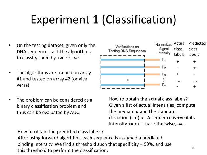 Experiment 1 (Classification)