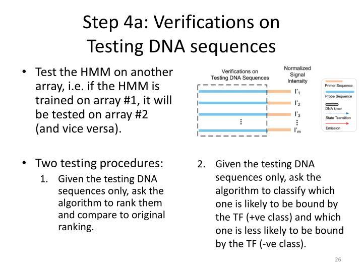 Step 4a: Verifications on