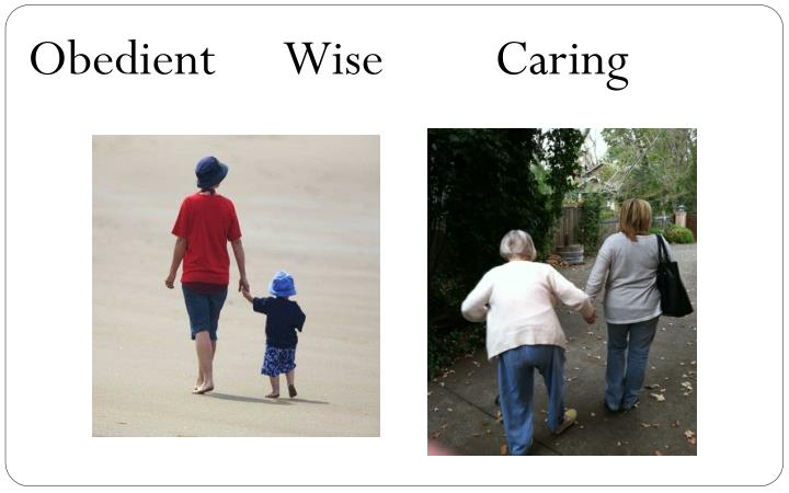 Obedient      Wise         Caring