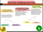sistem pembinaan pns