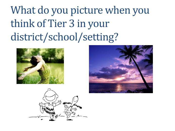 What do you picture when you think of Tier 3 in your district/school/setting?
