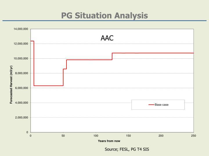 Pg situation analysis