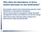 why does the abundance of erica tetralix decrease on wet heathlands
