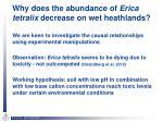 why does the abundance of erica tetralix decrease on wet heathlands1