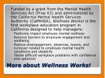 more about wellness works