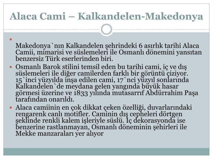 Alaca Cami –