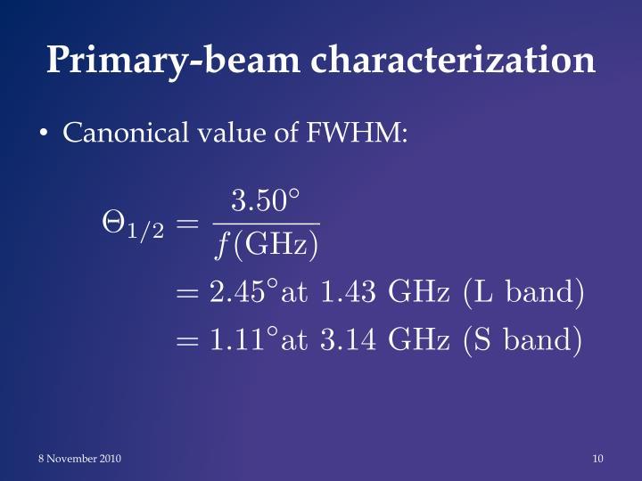 Primary-beam characterization