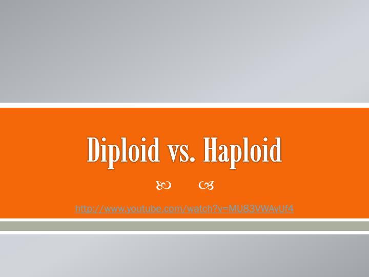 Diploid vs. Haploid