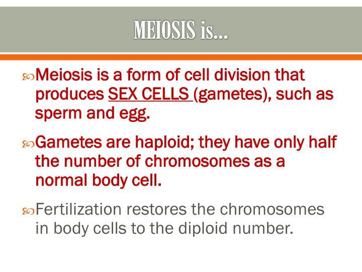MEIOSIS is…