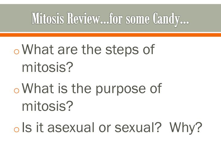 Mitosis review for some candy