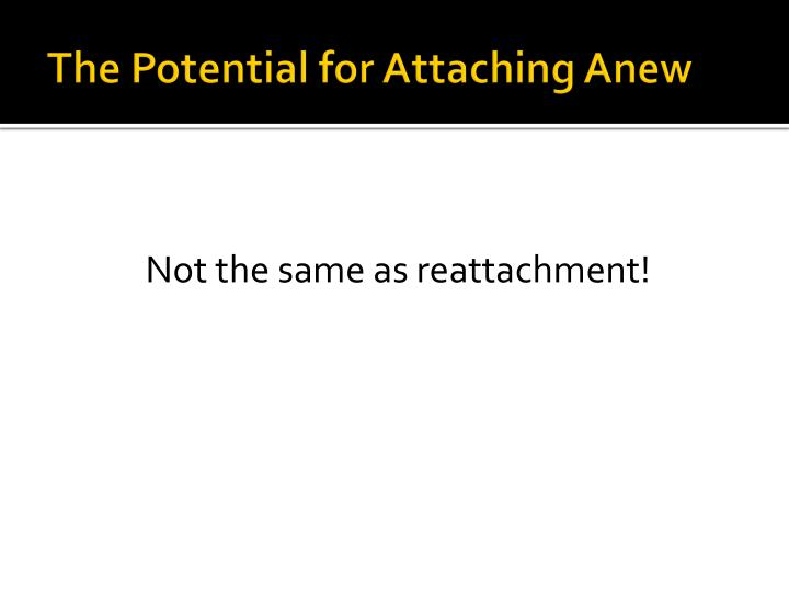 The Potential for Attaching Anew