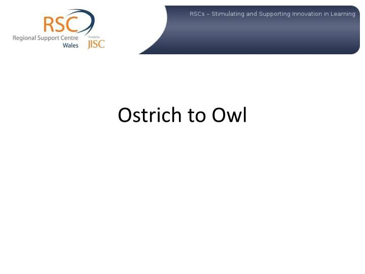 ostrich to owl