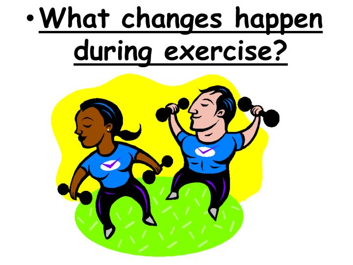 What changes happen during exercise?