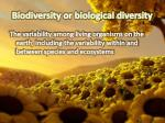 biodiversity or biological diversity