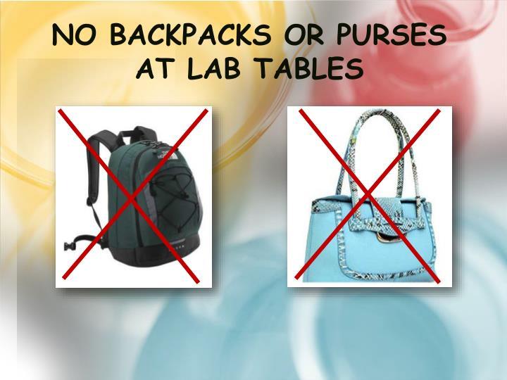 No Backpacks or Purses