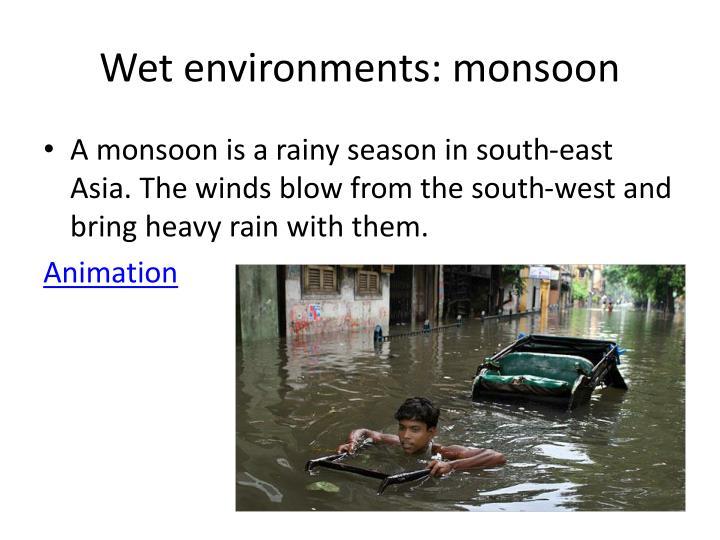 Wet environments: monsoon