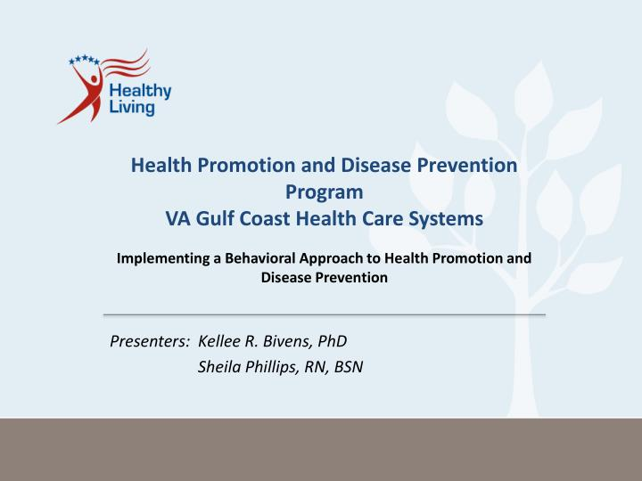 health promotion and disease prevention program va gulf coast health care systems n.