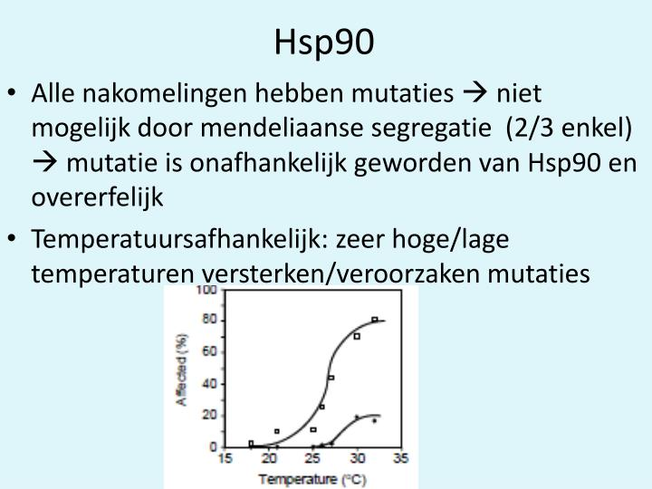 Hsp90
