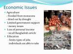economic issues